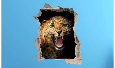 Conni Oberkircher´s Wandsticker »Eye of the Tiger« kaufen