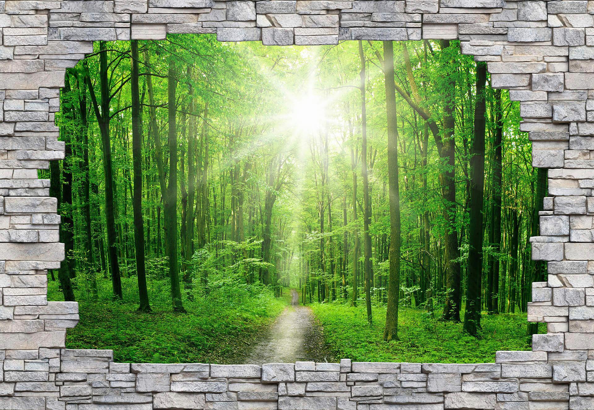 Fototapete Sunny Forest Mauer 384/260 cm Wohnen/Wohntextilien/Tapeten/Fototapeten/Fototapeten Stadt