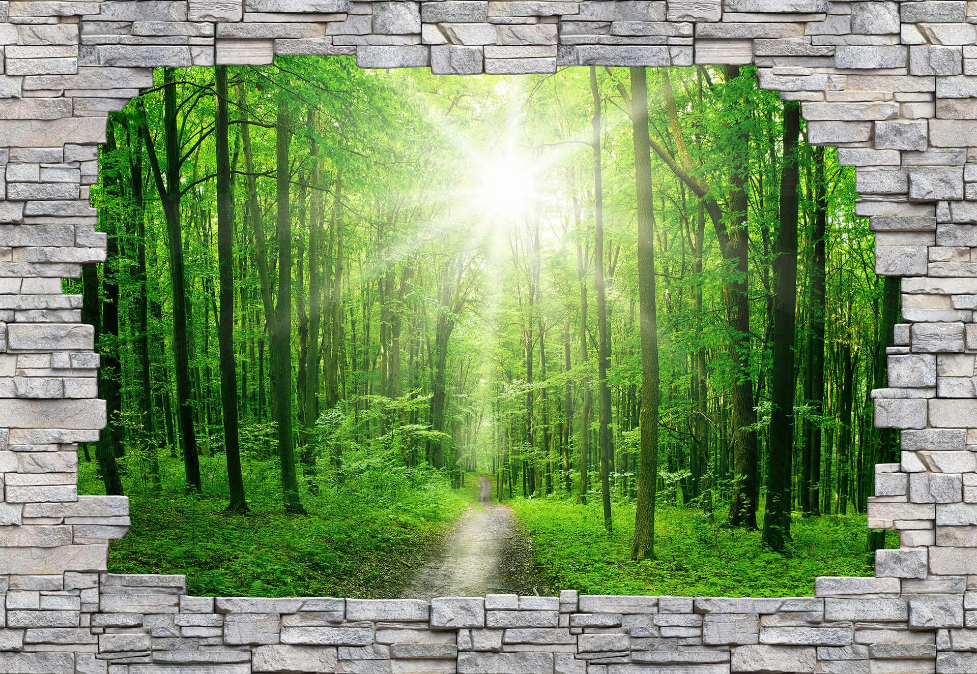 Fototapete Sunny Forest Mauer Wohnen/Wohntextilien/Tapeten/Fototapeten/Fototapeten Stadt