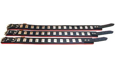 HEIM Hunde-Halsband »Apollo«, Echtleder, schwarz/rot, Länge: 50-65 cm kaufen