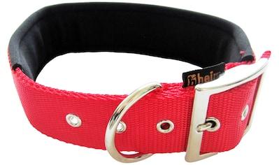 HEIM Hunde-Halsband, Nylon, mit Neopren-Futter, Länge: 50 cm kaufen