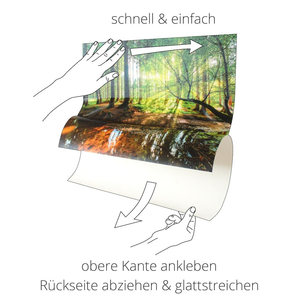 Artland Wandbild »Bäume im Sonnenuntergang«, Afrika, (1 St.), in vielen Größen & Produktarten - Alubild / Outdoorbild für den Außenbereich, Leinwandbild, Poster, Wandaufkleber / Wandtattoo auch für Badezimmer geeignet