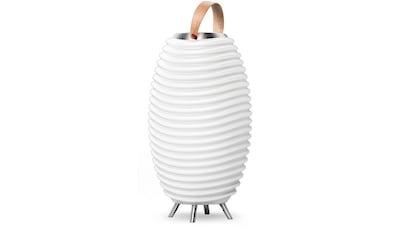 kooduu LED Stehlampe »Synergy Pro«, 1 St., Warmweiß, Soundsystem beliebig koppelbar mit Pro-Serie, Getränkekühler, Vase, Akku, Tischleuchte, für den IN- und OUTDOOR-BEREICH kaufen
