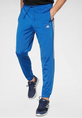 adidas Performance Trainingshose »MUST HAVE TRICOT PANT« kaufen
