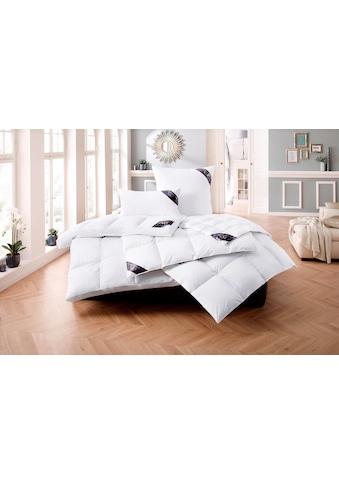 Daunenbettdecke, »Lugano«, Excellent, Füllung: 100% Daunen, Bezug: 100% Baumwolle kaufen