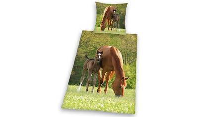 Kinderbettwäsche »Pferd mit Fohlen«, Herding Young Collection kaufen