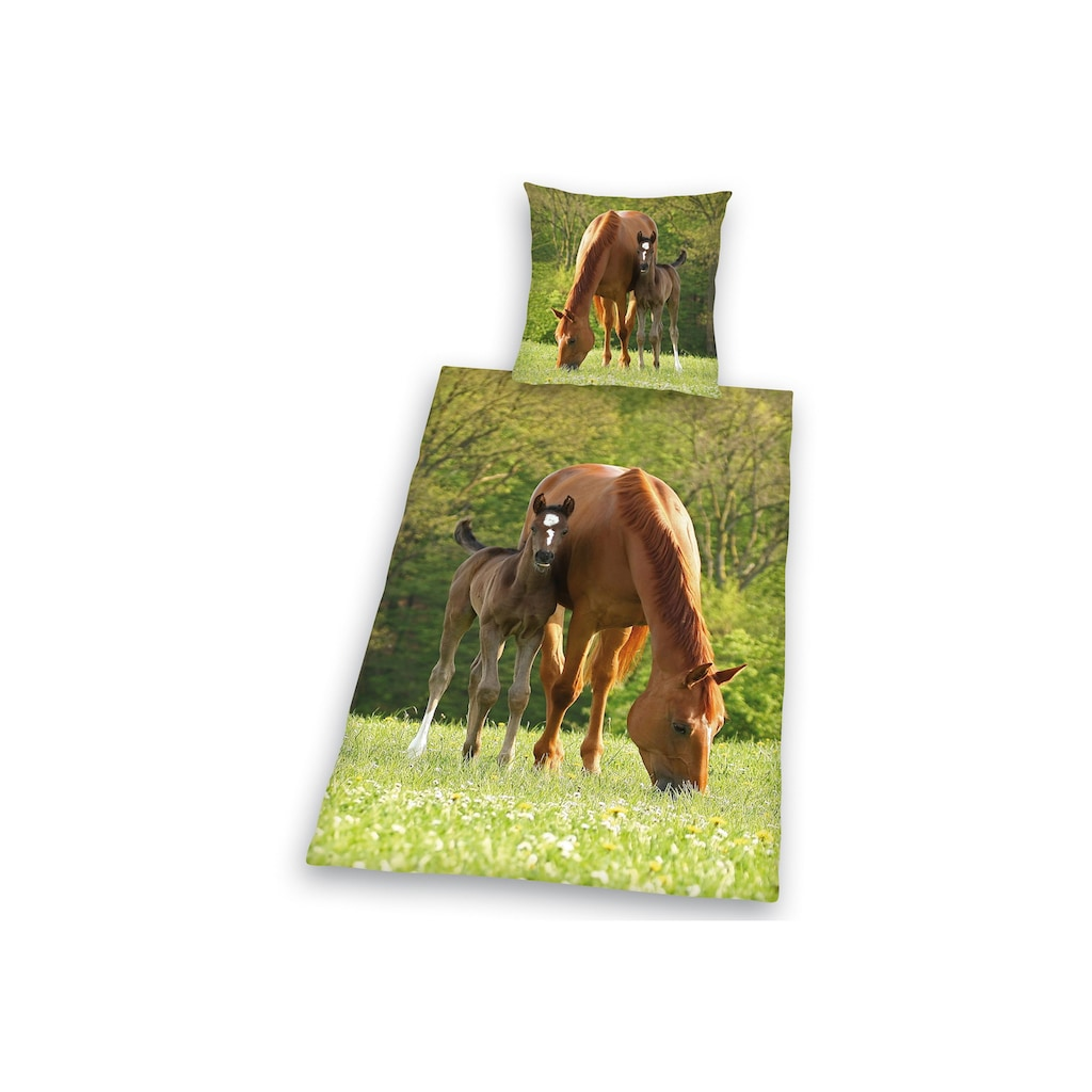 Herding Young Collection Kinderbettwäsche »Pferd mit Fohlen«, für Pferdefreunde