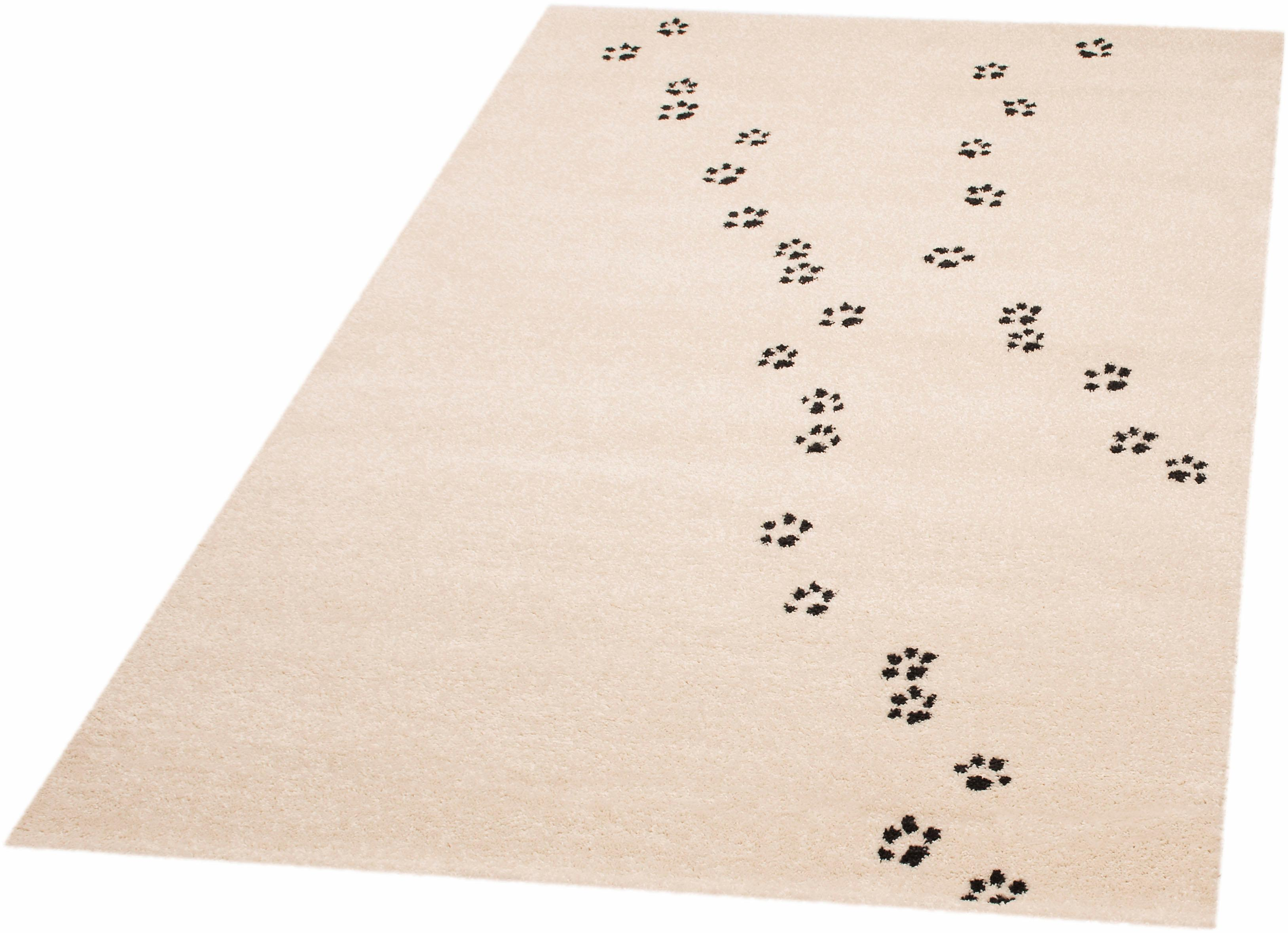 Teppich Paw Prints Ted Zala Living rechteckig Höhe 8 mm maschinell gewebt