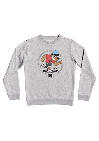 DC Shoes Sweatshirt »Pitbowl« kaufen