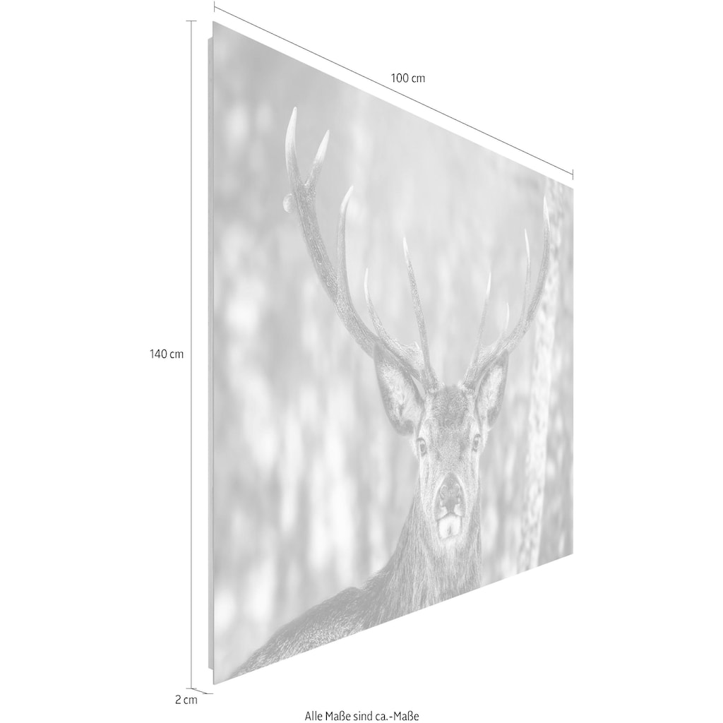 Home affaire Deco-Panel »Hirsch im Winter«