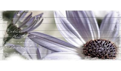 QUEENCE Holzbild »Lila Blume«, 40x80 cm Echtholz kaufen