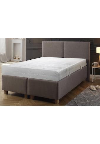 fan Schlafkomfort Exklusiv Taschenfederkernmatratze »ProVita Luxus T«, 420 Federn, (1 St.), Getestete Qualität! Kundenliebling! kaufen