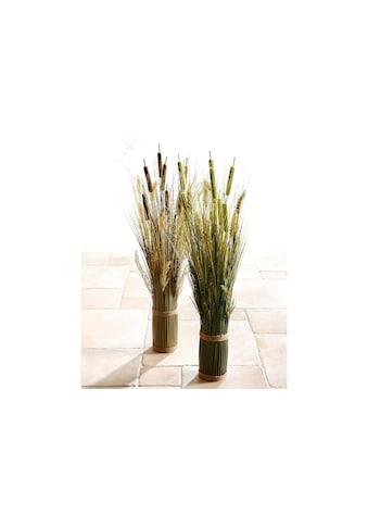I.GE.A. Kunstpflanze »Grasarrangement« kaufen
