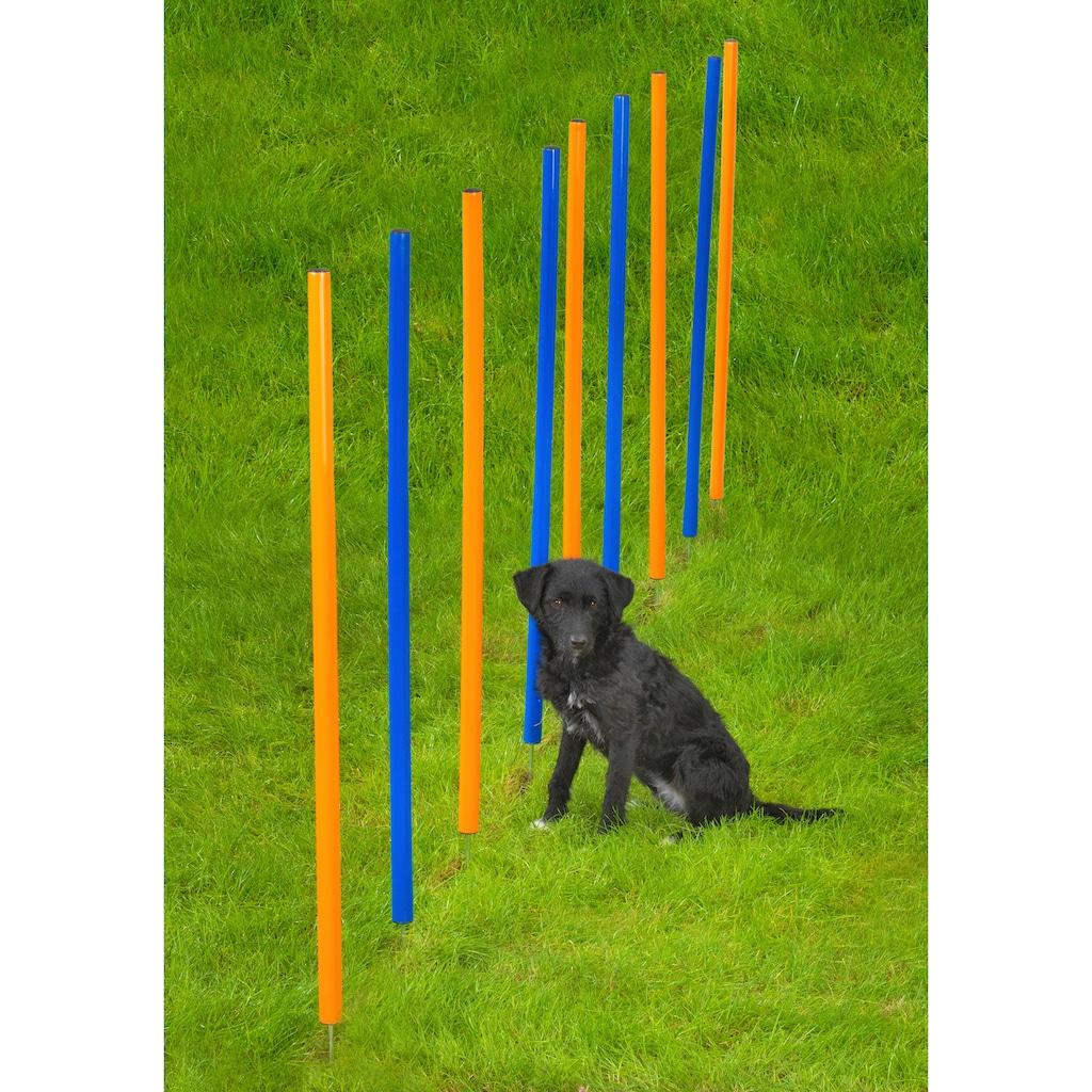 Heim Hunde-Slalomstäbe »Dog Agility Slalom«