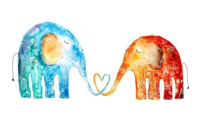 Wall-Art Wandtattoo »Lebensfreude - Elefantenliebe« kaufen