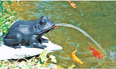 HEISSNER Teichfigur »Frosch«, mit Speierfunktion kaufen