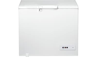 BAUKNECHT Gefriertruhe »GT 270 2«, 91,6 cm hoch, 101 cm breit kaufen