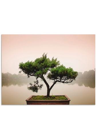 Artland Wandbild »Chinesischer Bonsaibaum« kaufen