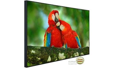 Papermoon Infrarotheizung »Papageien«, sehr angenehme Strahlungswärme kaufen