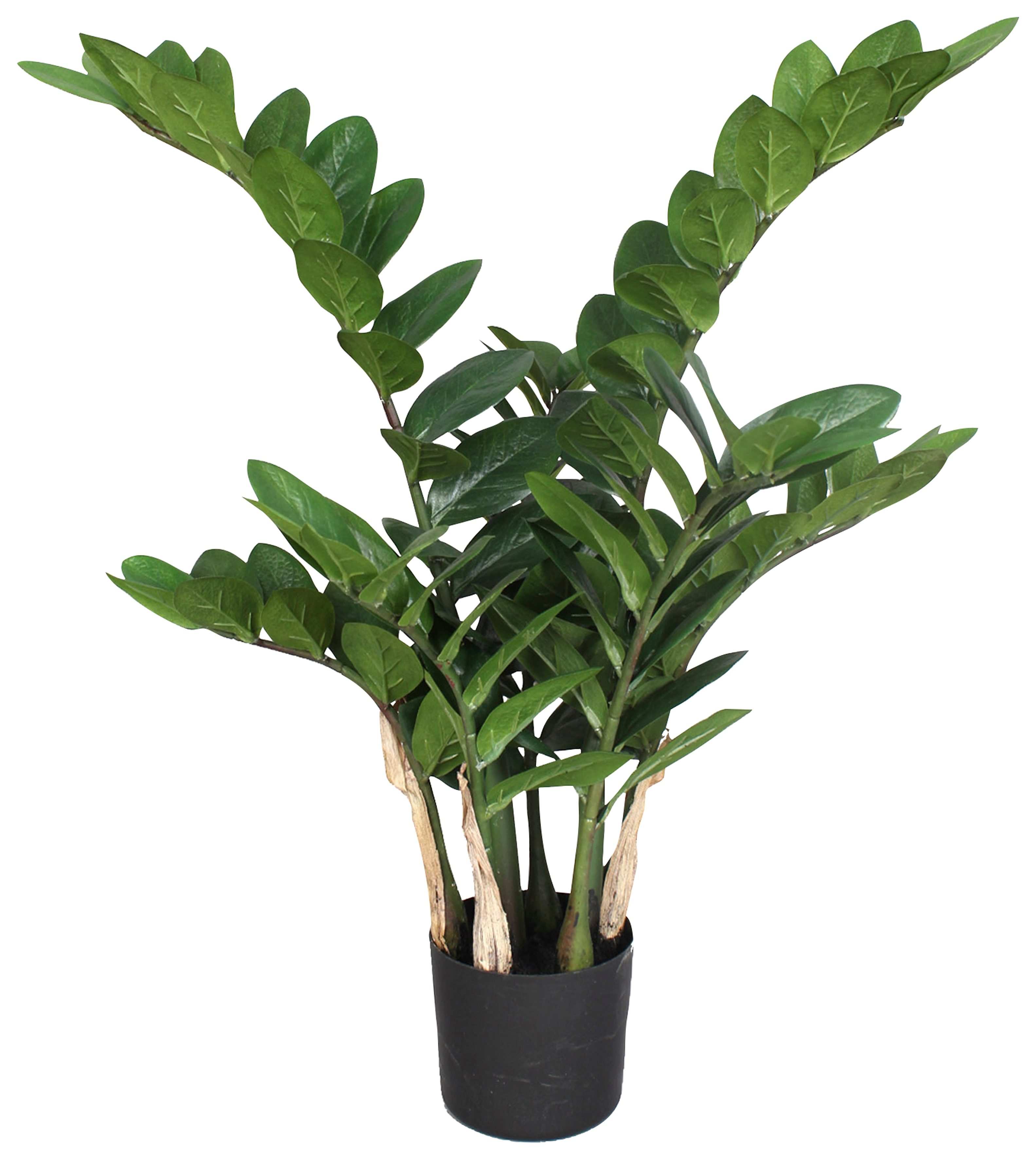 Kunstpflanze Zamifolia Technik & Freizeit/Heimwerken & Garten/Garten & Balkon/Pflanzen/Zimmerpflanzen