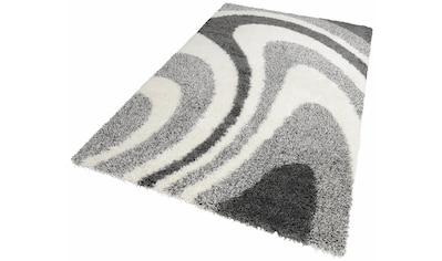 Hochflor - Teppich, »LOIR«, merinos, rechteckig, Höhe 50 mm, maschinell gewebt kaufen