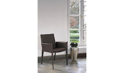 Fink Esszimmerstuhl »JOHN« kaufen