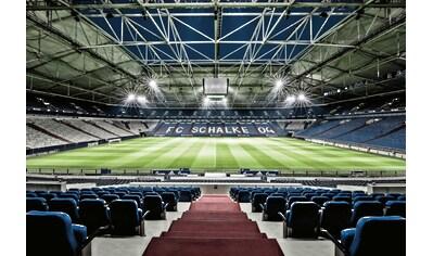 Vliestapete »Schalke 04 Arena Tribüne«, Wall - Art kaufen