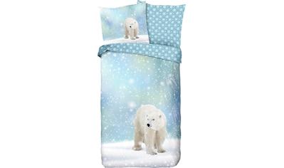 good morning Kinderbettwäsche »Icebear«, mit winterlichem Print kaufen
