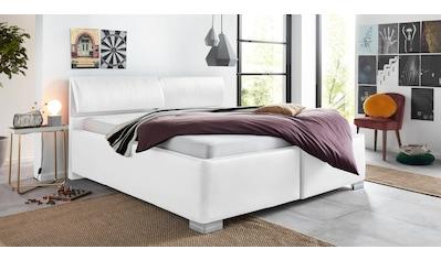 Breckle Polsterbett, mit Bettkasten und Kopfteilverstellung kaufen