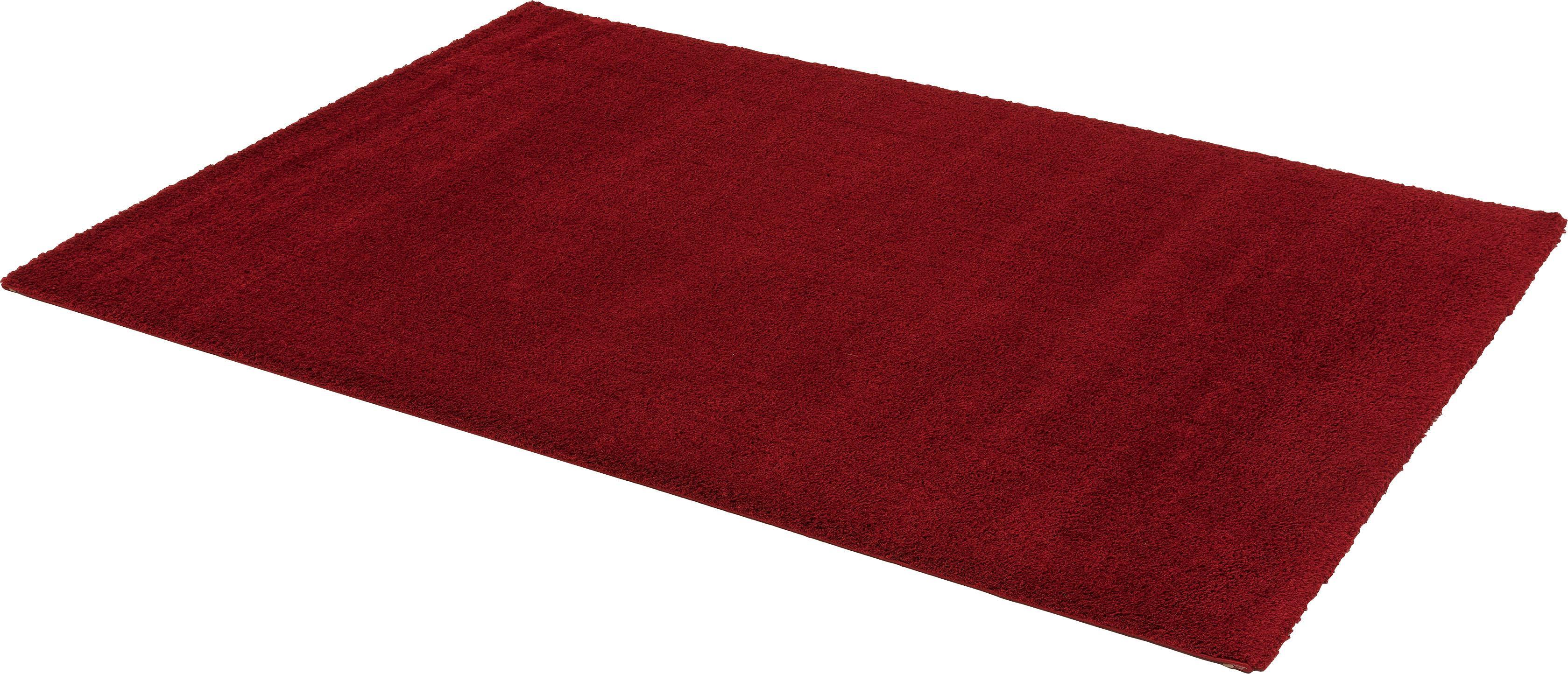 Hochflor-Teppich Rivoli ASTRA rechteckig Höhe 30 mm maschinell gewebt