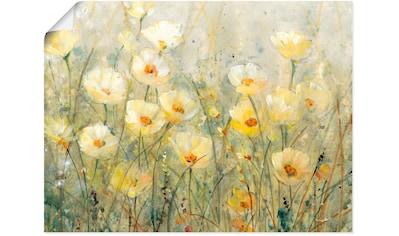 Artland Wandbild »Sommer in voller Blüte I«, Blumenwiese, (1 St.), in vielen Größen & Produktarten - Alubild / Outdoorbild für den Außenbereich, Leinwandbild, Poster, Wandaufkleber / Wandtattoo auch für Badezimmer geeignet kaufen