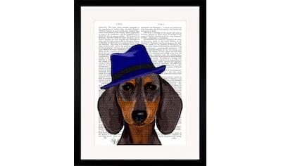 G&C Bild »NEWSPAPER HAT DOG II« kaufen