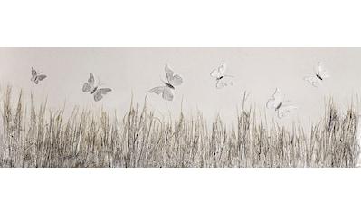 Spiegelprofi GmbH Leinwandbild »Butterfly meadow«, (1 St.) kaufen