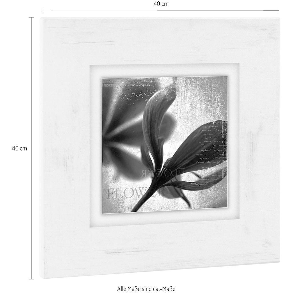 Home affaire Holzbild »Lila Blüte II«, 40/40 cm