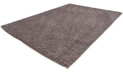 Hochflor - Läufer, »Softshine 2236«, Carpet City, rechteckig, Höhe 30 mm, maschinell gewebt kaufen