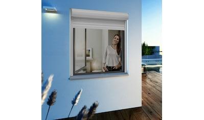 Windhager Insektenschutz-Fenster »Ultra Flat«, BxH: 100x120 cm kaufen