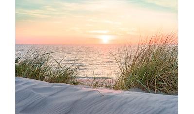 Consalnet Fototapete »Sonnenuntergang Strand«, Motiv kaufen