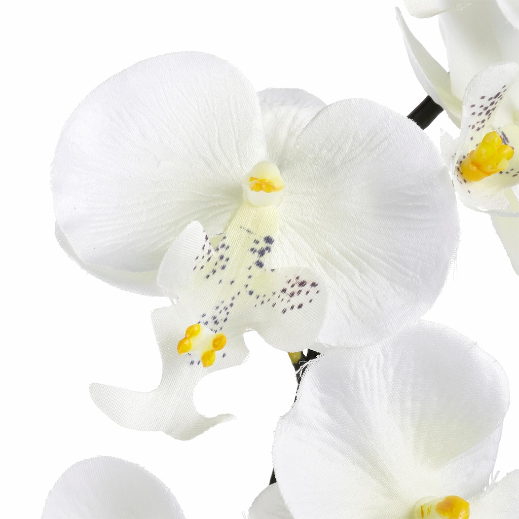 I.GE.A. Kunstpflanze »Orchidee«