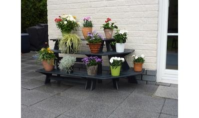 PROMADINO Blumentreppe »Anja«, mit Eckelement, BxTxH: 137x59x62 cm kaufen