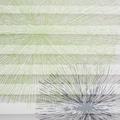 Liedeco Plissee »Blütenball florales Design«, Lichtschutz, ohne Bohren, verspannt, Klemmfix Plissee Blütenball