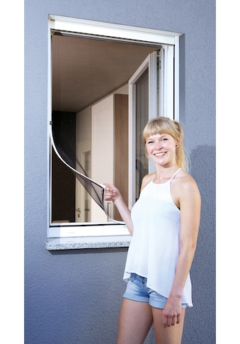 SCHELLENBERG Insektenschutz-Fenster »Magnet«, BxH: 120x120 cm, weiß kaufen