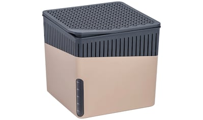 WENKO Luftentfeuchter »Cube Beige«, 1000 g kaufen