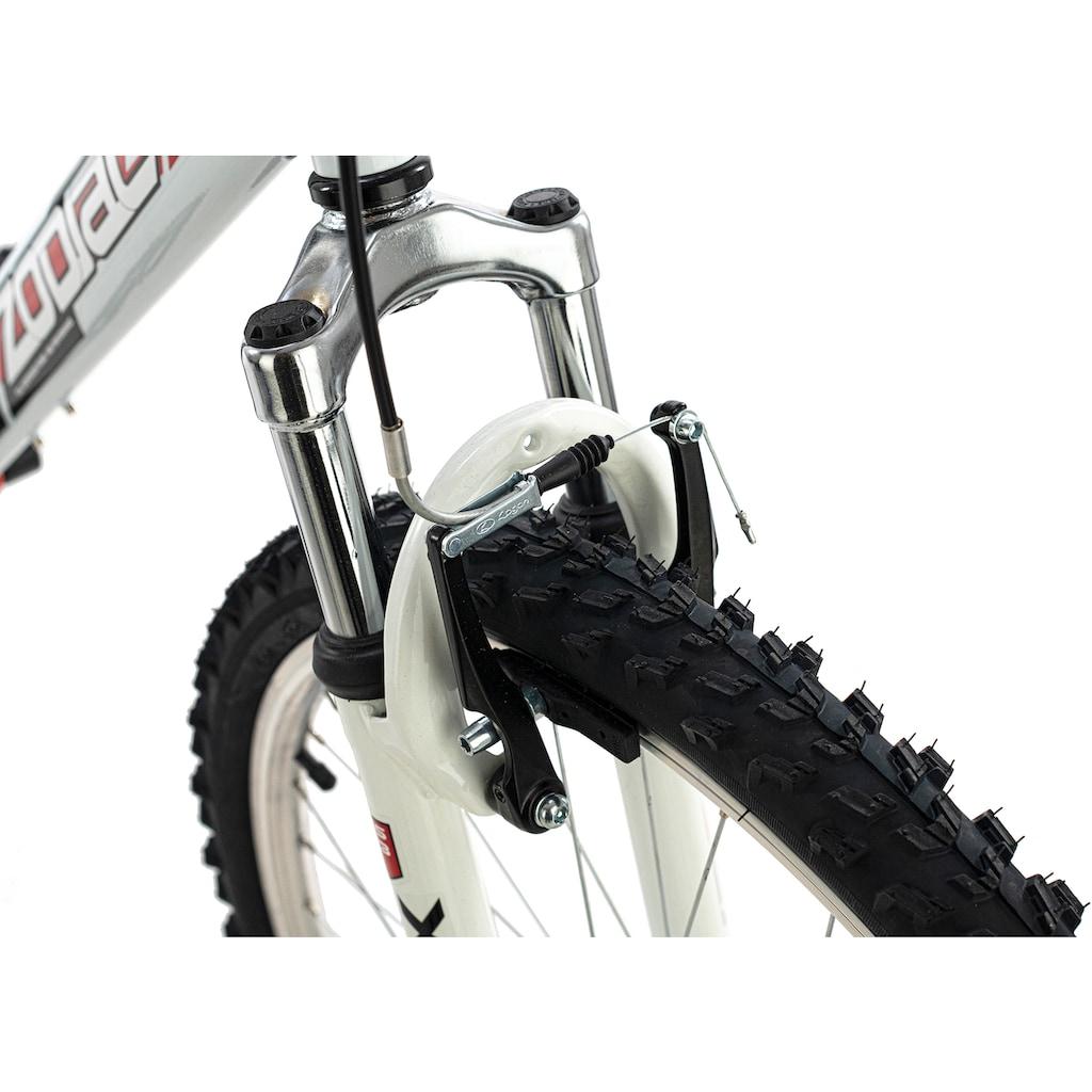 KS Cycling Mountainbike »Zodiac«, 21 Gang, Shimano, Tourney Schaltwerk, Kettenschaltung
