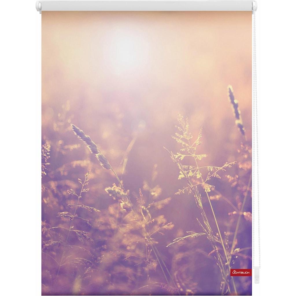 LICHTBLICK ORIGINAL Seitenzugrollo »Klemmfix Motiv Sommerabend«, Lichtschutz, ohne Bohren, freihängend, bedruckt