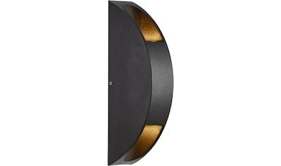 Nordlux LED Wandleuchte »PIGNIA«, LED-Modul, 5 Jahre Garantie auf die LED kaufen
