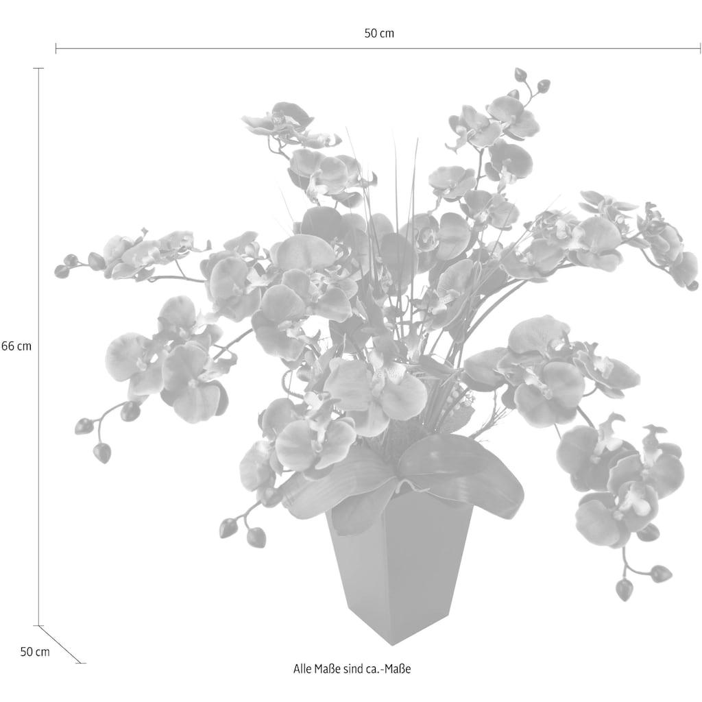 Kunstpflanze »Phalaenopsis im Topf«