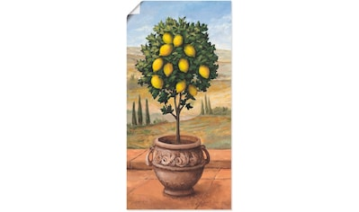 Artland Wandbild »Zitronenbaum«, Bäume, (1 St.), in vielen Größen & Produktarten -... kaufen