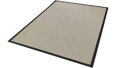 Dekowe Sisalteppich »Brasil, Wunschmaß«, rechteckig, 10 mm Höhe, Obermaterial: 100% Sisal, mit Bordüre, Wohnzimmer kaufen