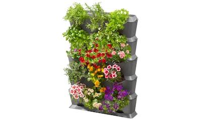 GARDENA Pflanzkasten »NatureUp!, 13151 - 20«, Set - Vertikal mit Bewässerung kaufen