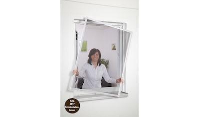HECHT Insektenschutz - Fenster »Basic«, Bausatz BxH: 100x120 cm, braun kaufen